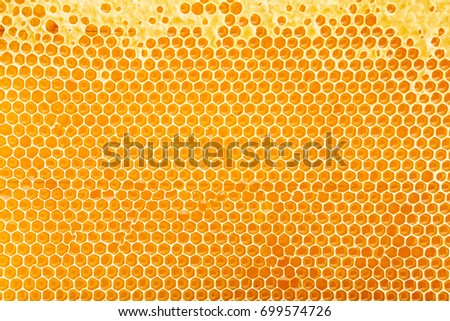 sealed honeycomb background. Top view.