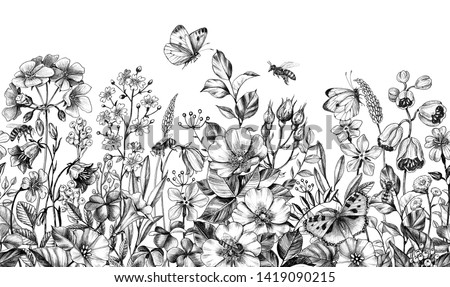 Seamless border made with hand drawn monochrome bees, butterflies, meadow plants, dog rose, wildflowers in row on white background. Pencil drawing  elegance floral pattern  in vintage style. #1419090215