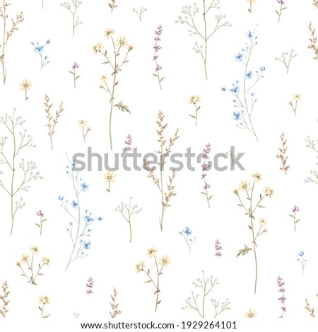 Seamless floral pattern with meadow dried flowers isolated on white background. Watercolor hand drawn illustration sketch Foto stock ©
