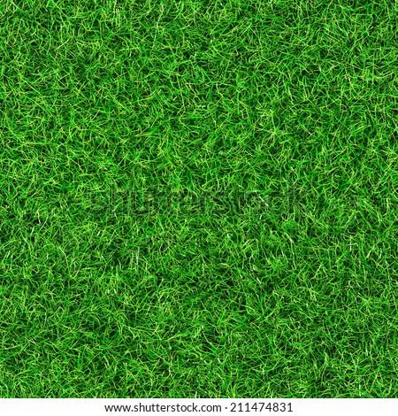 seamless grass texture - Shutterstock ID 211474831