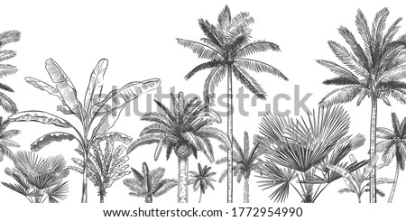 Seamless horizontal tropical background. Hand drawn palm trees, sketch exotic tropic jungle leaves and paradise palm tree  wallpaper illustration. Exotic palm tree botanical, rainforest foliage