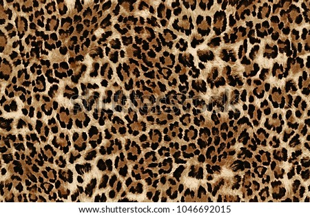 seamless leopard pattern print animals african