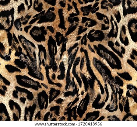 Seamless leopard texture, african animal fur