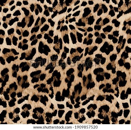 Seamless leopard texture, leopard fur, animal pattern