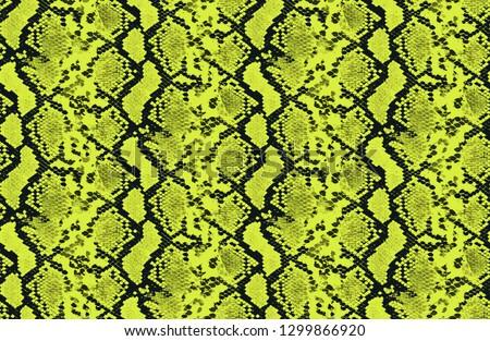 seamless neon color snake skin print pattern.
