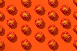 Seamless pattern of beautiful autumn orange flower on paper orange background. Minimal flowers concept in hard light with shadows. Abstract backdrop. Top view, flat lay.