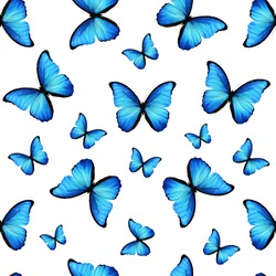 seamless pattern of colored butterflies isolated on white background