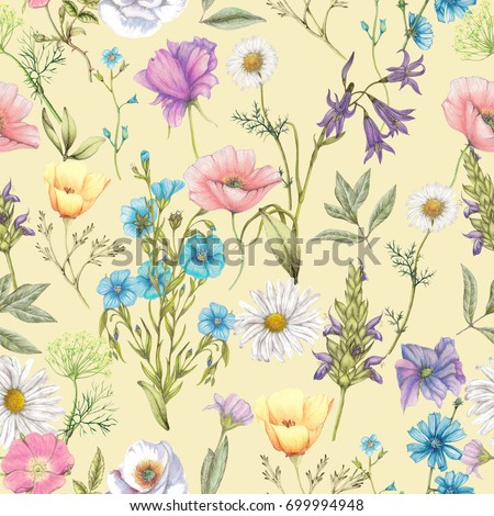 Seamless pattern of hand drawn wildflowers