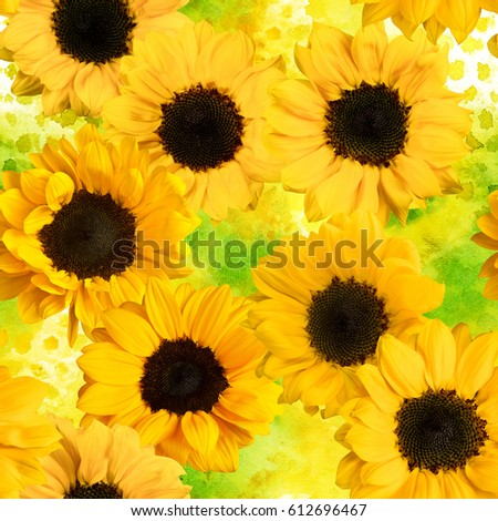 Seamless pattern with photos of sunflowers, on a yellow green dotted watercolor texture #612696467