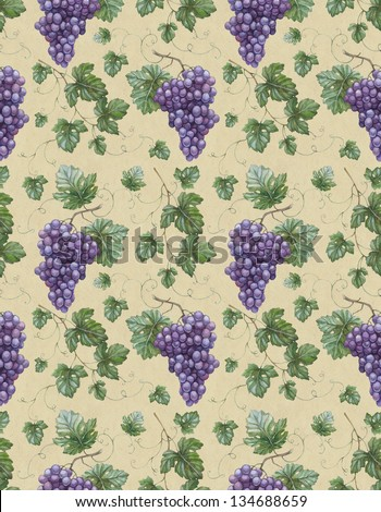 Grape and wine illustrations