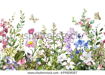 seamless rim. Border with Herbs and wild flowers, leaves. Botanical Illustration on white background. Spring composition with butterfly, botanic, watercolor drawing