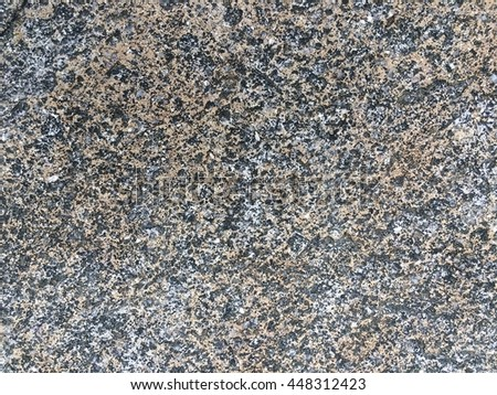 Seamless rock surface background, stone floor texture  #448312423