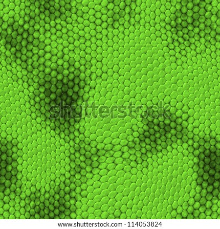 seamless snake texture. High detailed sufrace animals