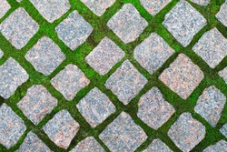Seamless texture of a paving stone track on a green grass.