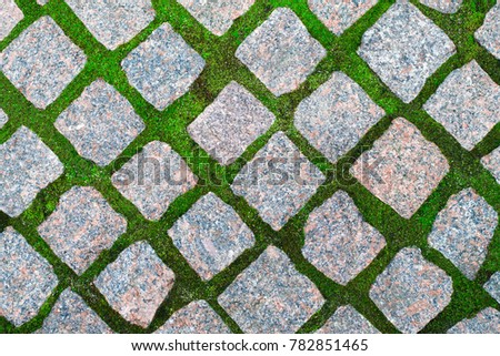 Tiles Footpath And Green Grass Images And Stock Photos