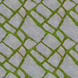 Seamless texture of green grass between the road tiles. Green grass grow between the tiles of the walkway. The concept of harmonious fusion of the city and nature. 4 fragments in one frame