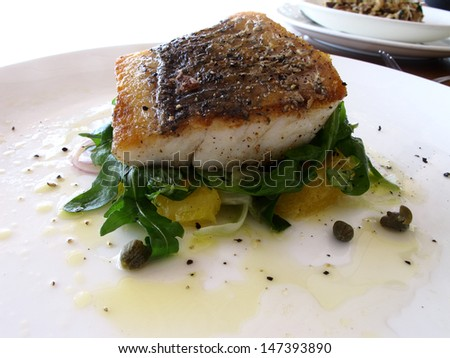 Seared fresh fish on a bed of salad