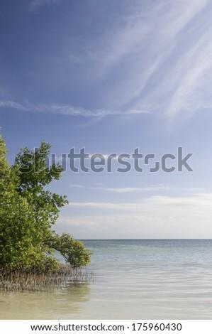Seascape in the Florida Keys