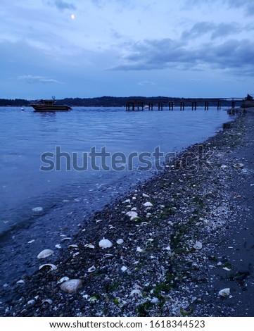 Seascape shoreline in the evening