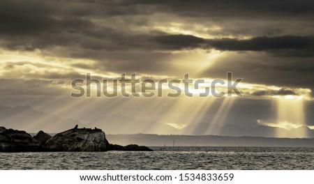 Seascape. Sunrise at Seal Island. South African (Cape) fur seals  (Arctocephalus pusillus pusillus), Colony of cape fur seals. Western Cape, South Africa.