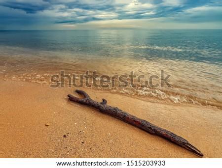 Seascape, Superb long exposure sunrise view with a log at the Black Sea coast, Bulgaria