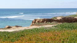 Seascape vista point, viewpoint in Carlsbad, California coast USA. Frome above panoramic ocean tide, blue sea waves, steep eroded cliff. Coastline shoreline overlook. Green ice plant succulent lawn.