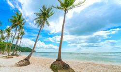 Seascape with tropical palms on beautiful Sao sandy beach in Phu Quoc island, Vietnam
