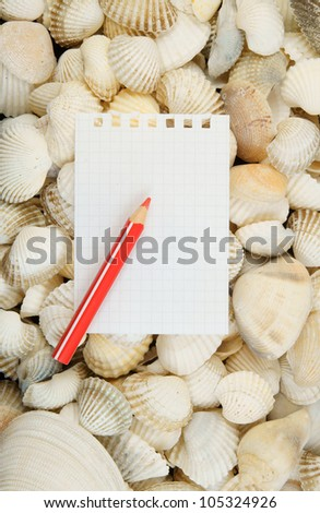 Seashell background and paper with pencil close up