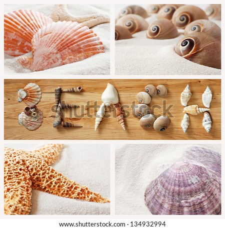 Seashell collage with shells arranged to spell the word 'BEACH' on wood background.