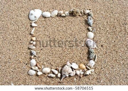 seashell frame on sand