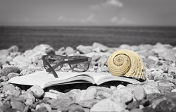 Seashell lies on top of the open book on the beach. Selective focus. Vacation concept.