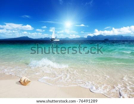 seashell on the beach of Poda island Thailand