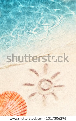 Seashell on the summer beach in sea water. Summer background. Summer time