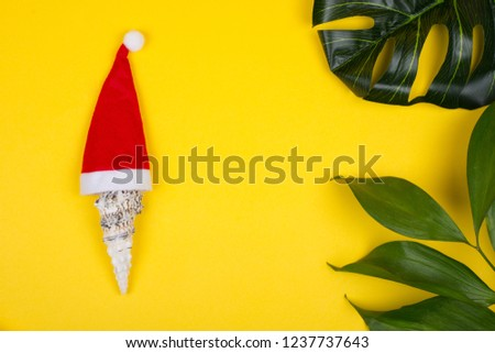1704a5949 Red Santa Claus hat on beach with seashell, Travel Christmas concept ...