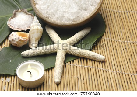 seashell with starshell and bowl of bath salt with green leaf on pretty bamboo mat