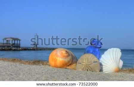 Seashells and Bottle on the Beach