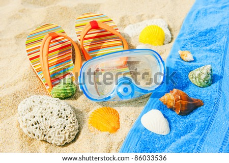 Seashells and diving mask on the beach