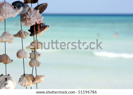 seashells on a string on beach
