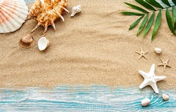 Seashells on sand. Sea summer vacation background with space for the text. Top view