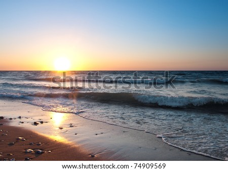 Seashore during bright sundown. Composition of the nature