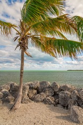 Seashore View in the Keys