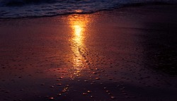 Seaside at sunset hours. Sand and waves at sunlight. Wallpaper. Postcard of the sunset; sandy beach. Sunset. Sunrays reflect on a wet cost. Beach at sunset hours.  Water. Sea