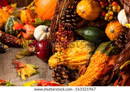 Season Harvest Decorations 3