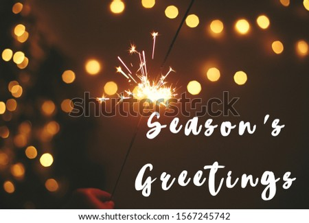 Season's greetings  text sign on glowing sparkler in hand on background of golden christmas tree lights in dark festive room. Fireworks burning. Seasons greeting card #1567245742