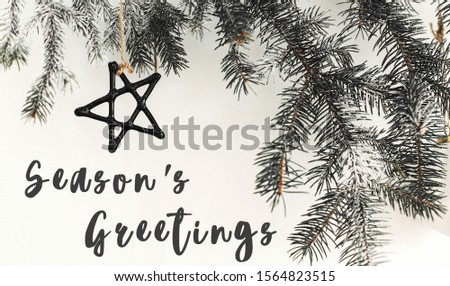 Season's greetings text sign on stylish christmas branches with glass modern ornaments hanging on white wall. Creative christmas festive decor. Seasons greeting card #1564823515