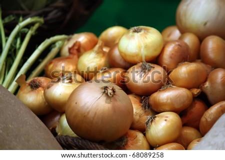 Season vegetables. Food ingredients. Food onions.
