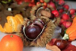 Seasonal background with sweet chestnut, Pumpkin, Mandarin, Wild apples and autumn leafs.