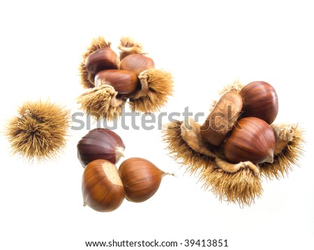 Seasonal fruits like sweet chestnuts isolated on a white background.