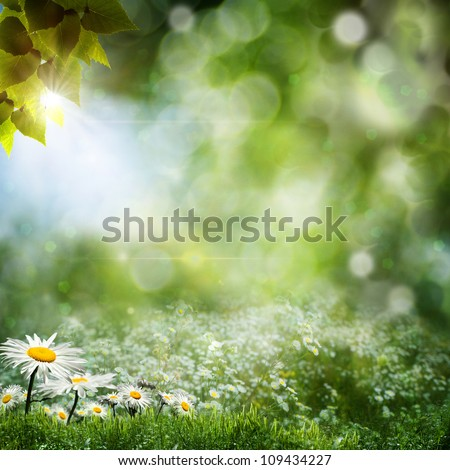 Seasonal natural backgrounds with daisy flowers - Shutterstock ID 109434227