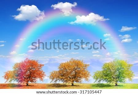 Seasonal trees with blue sky and rainbow